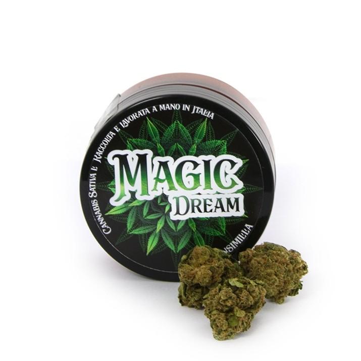 magic_dream_01_1
